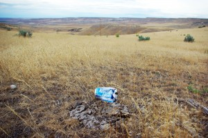 Cow flop, beer cans, and cheatgrass. © Ken Cole