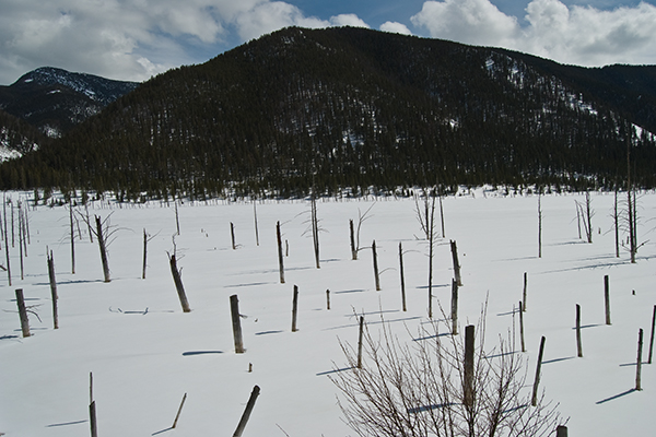 Earthquake Lake on the Madison River, deep in the winter. Montana. Copyright Ralph Maughan