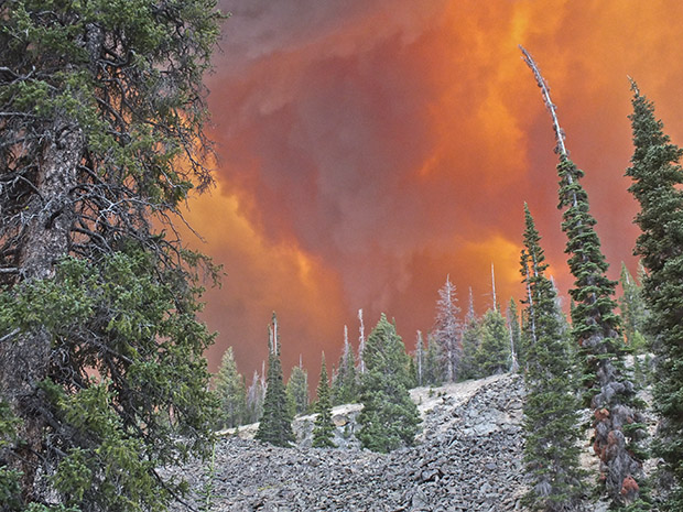 The Lodgepole wildfire west of Challis, Idaho. Courtesy U.S. Forest Service