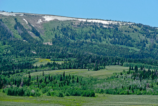In the lesser known mountains of Wyoming -- Commissary Ridge north of Cokeville
