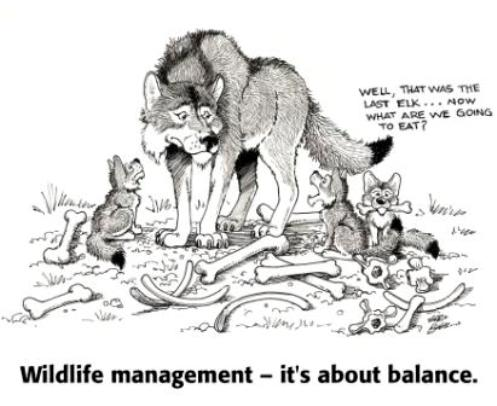 Wolf_mgmt_balance_illustration_with_caption_web_1