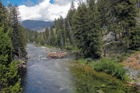 Middle Fork of the Salmon in Idaho, a national Wild River . Copyright Ralph Maughan