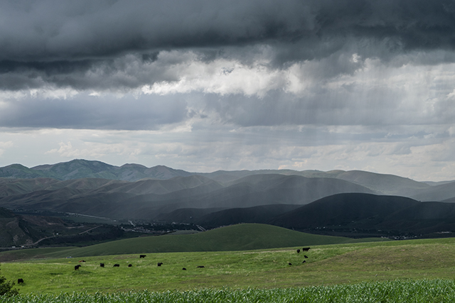 Late May thundershowers over the Pocatello Range mountains. Copyright Ralph Maughan