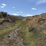 Slaven Creek on the Argenta allotment, Battle Mountain, Nevada.