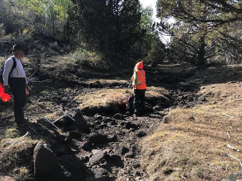 Little Fir Creek after grazing 2019